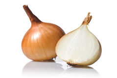 Onion isolated on white Stock Images