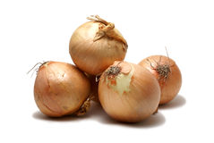 Onion isolated on white Stock Image
