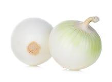 Onion isolated on white Royalty Free Stock Image