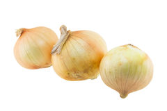 Onion isolated Stock Images