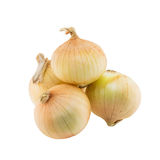Onion isolated Royalty Free Stock Image