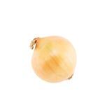 Onion isolated Royalty Free Stock Photos