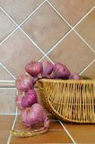 Onion in kitchen Royalty Free Stock Images