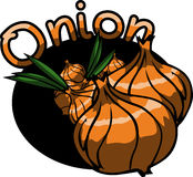 Onion label or sticker Stock Photos
