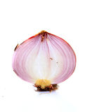 Onion layers Royalty Free Stock Photography