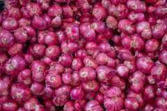 Onion. A lot of onion in Thailand market Stock Image