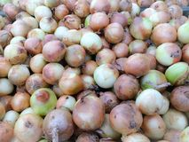 Onion. In the market Royalty Free Stock Image