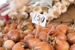 Onion on a market. With price tag Stock Image