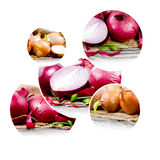 Onion mix Royalty Free Stock Photo