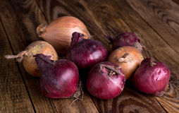 Onion on old, wooden table Stock Photos