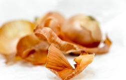 Onion with onion skin in the foreground Stock Photography