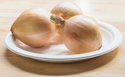 Onion. S placed in plastic plate Stock Image