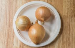 Onion. S placed in plastic plate Stock Photography