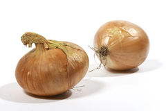 Onion over white stock photos