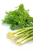 Onion and parsley Royalty Free Stock Images