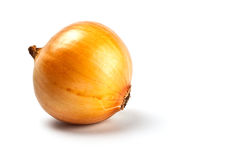 Onion in peel Royalty Free Stock Photography