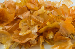 Onion peel Stock Photography