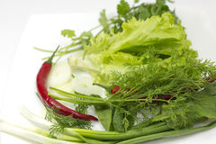 Onion, pepper and verdure Royalty Free Stock Image