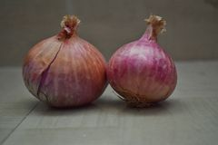 Onion picture in natural lighting stock photography