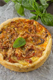 Onion pie Royalty Free Stock Photo
