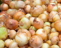Onion pile Royalty Free Stock Images