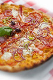 Onion Pizza Stock Images