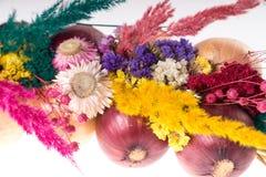 Onion plait Royalty Free Stock Photography