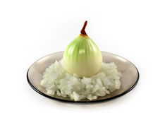 Onion on a plate Stock Image