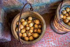 Onion in pots Stock Photography