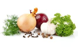 Onion,red onion,dill,parsley,pepper on white Stock Images
