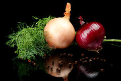Onion,red onion,dill,pepper and allspice isolated on black. Background royalty free stock photography