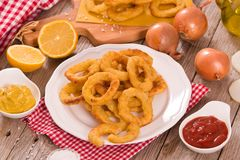 Onion rings. Onion rings with ketchup and mustard on white dish royalty free stock photography