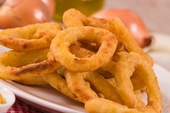 Onion rings. Onion rings with ketchup and mustard on white dish stock images