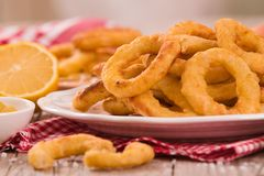Onion rings. Onion rings with ketchup and mustard on white dish stock photo