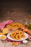 Onion rings. Onion rings with ketchup and mustard on white dish royalty free stock photos