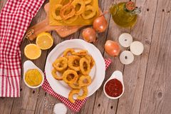 Onion rings. royalty free stock photography
