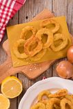 Onion rings. stock photo