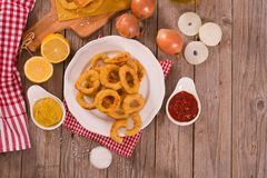 Onion rings. Onion rings on white dish stock image