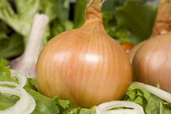 Onion Salad Royalty Free Stock Photography