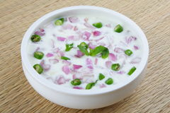 Onion Salad in bowl stock image