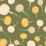 Onion seamless pattern. Vegetable onion background  Royalty Free Stock Photography