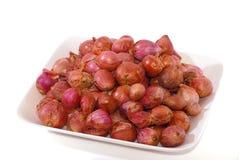 Onion Series 02 Royalty Free Stock Photo