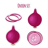 Onion set made in cartoon flat style. Label for markets Stock Images