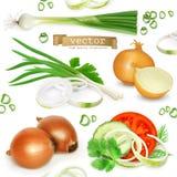 Onion set, vector icons Royalty Free Stock Photo