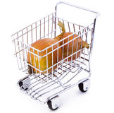 Onion in shopping cart. Isolated onion in shopping cart Stock Photography