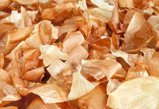 Onion skin Stock Images