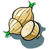 Onion and Slice Stock Photography