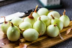 Onion and onion slices on wooden board. Onion and onion slices on wooden cutting board stock image