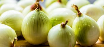 Onion and onion slices on wooden board. Onion and onion slices on wooden cutting board stock photo