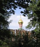 Onion spire framed with trees Royalty Free Stock Image